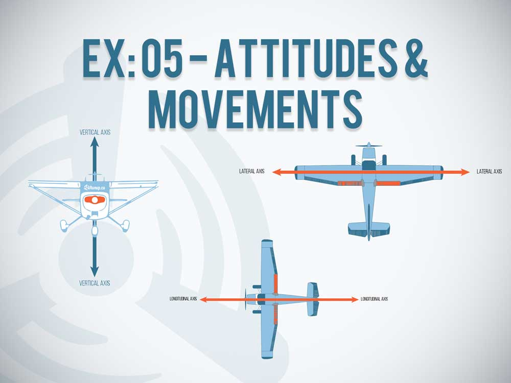 EX 05 Attitudes and Movements