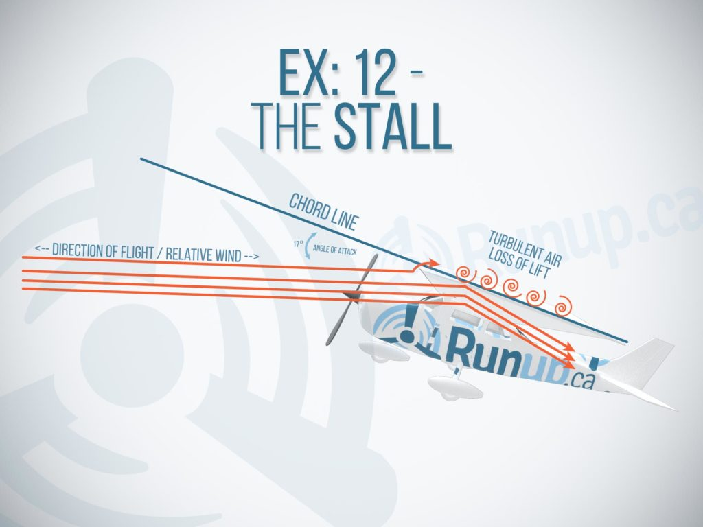 Exercise 12 Stall Canada